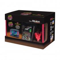 "Aqueon NeoGlow LED Aquarium Kit 5.5 Gallon Pink 16.5"" x 8.75"" x 10.5"""