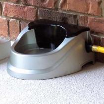 RPI Aqua Buddy Automatic Float Waterer 2 quart - AB021H